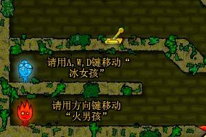 森林冰火人中文版