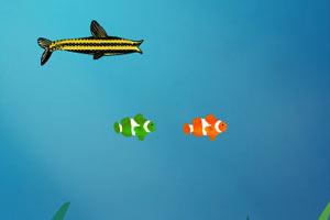 大鱼吃小鱼双人版