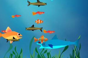 大魚吃小魚雙人版